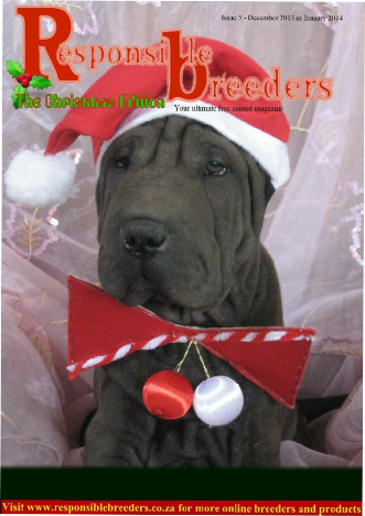 Breeders of Shar Pei Puppies in South Africa